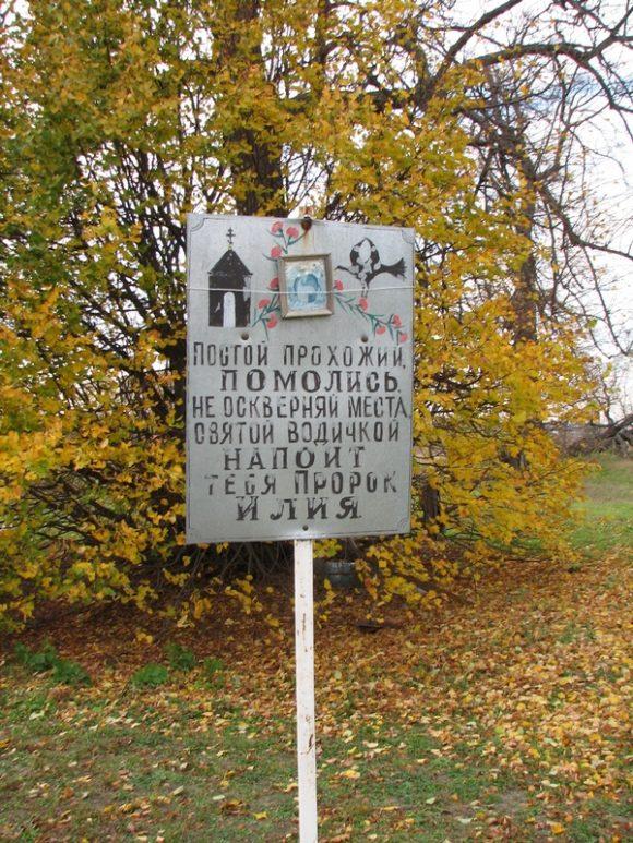 Рязанская обл., Шиловский р-н, ур. Ильинский источник (~1 км. на ЮВ от д. Ерахтур). Осень 2012.