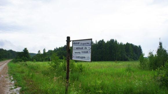 Калужская область, Медынский район. Лето 2013.