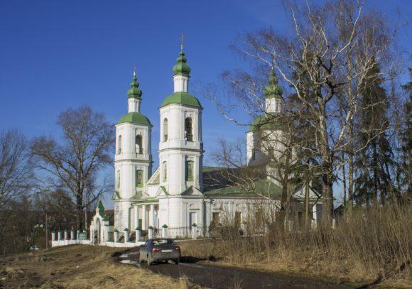 Московская область, Чеховский район, Молоди. Весна 2014.