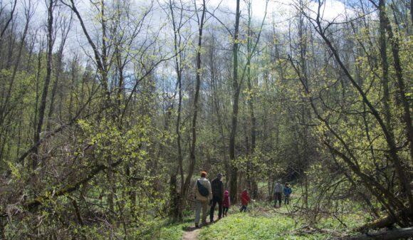 Тверская область, Старицкий район, пещеры. Весна 2014.