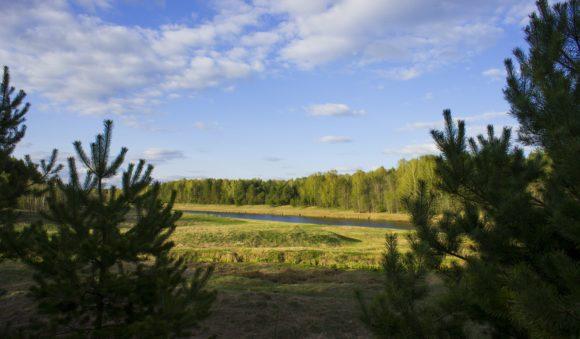 Тверская область, весна 2014.