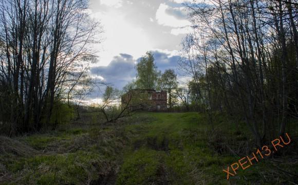 Тверская область, Торжокский р-н. Весна 2014.