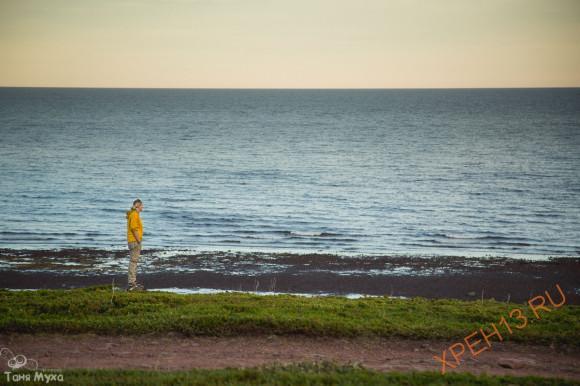 Кольский полуостров. Мурманская область, Терский район, Аметистовый берег. Лето 2014.
