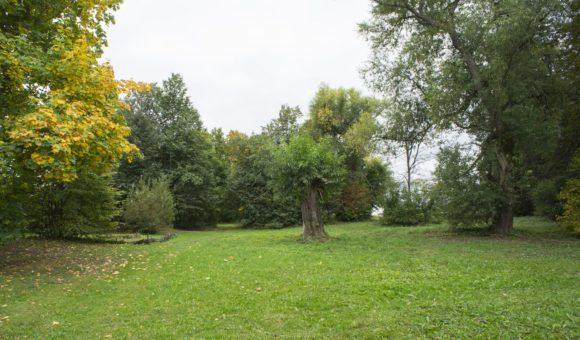 Московская область, Зарайский район, д. Даровое. Осень 2014.