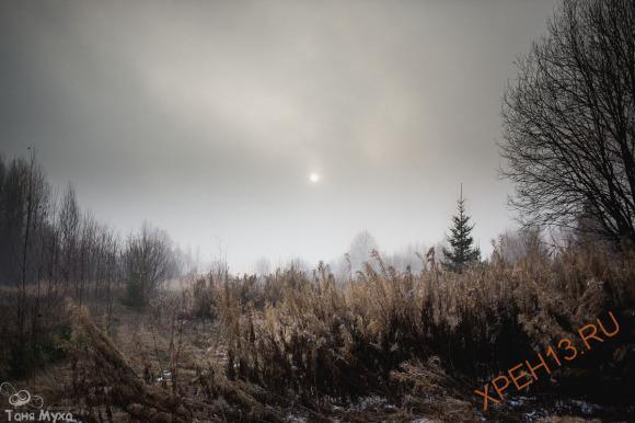 Костромская обл., Солигаличский р-н, ур. Высоково (Высоко). Осень 2014.