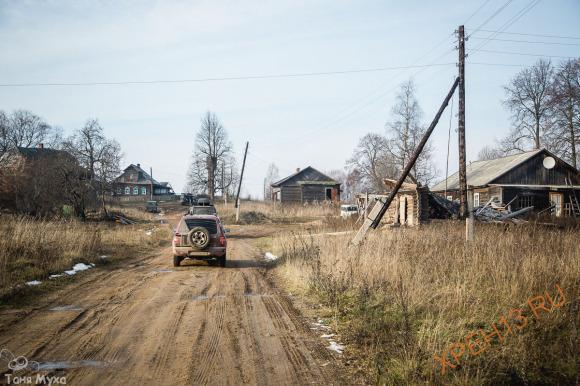 Костромская обл., Чухломский р-н, ур., д. Дорофейцево. Осень 2014.