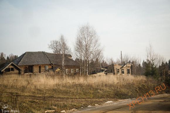 Костромская обл., Чухломский р-н. Осень 2014.