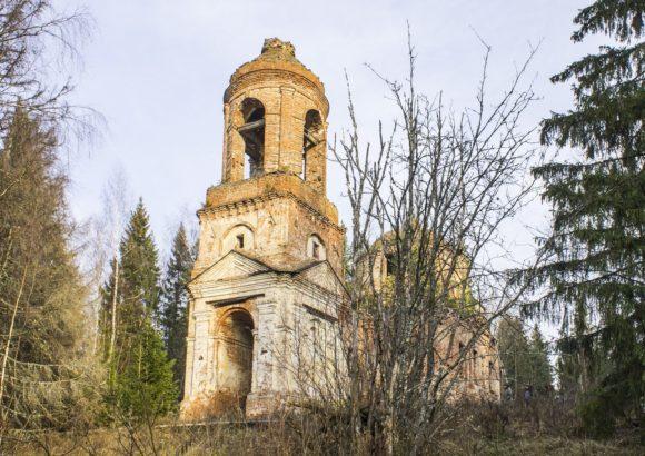 Костромская обл., Чухломский р-н, ур. Починок. Осень 2014.