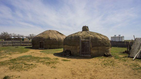 окрестности села Селитренное Харабалинского района Астраханской области. Весна 2015.