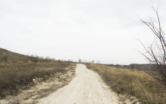 Воронежская область, Подгоренский район. Весна 2015.