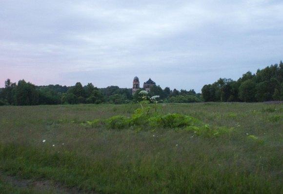 Калужская область, Малоярославецкий район, д. Боболи. Лето 2015.