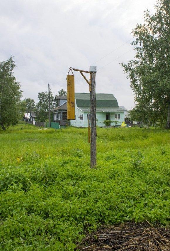 Владимирская область, Александровский район, д. Вертягино. Лето 2015.