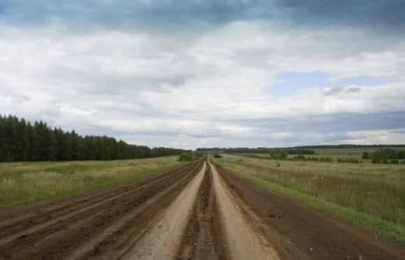 Мамадышский район, респ. Татарстан. Лето 2015.