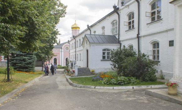 Рязанская область, Рыбновский район, с. Пощупово. Лето 2015.