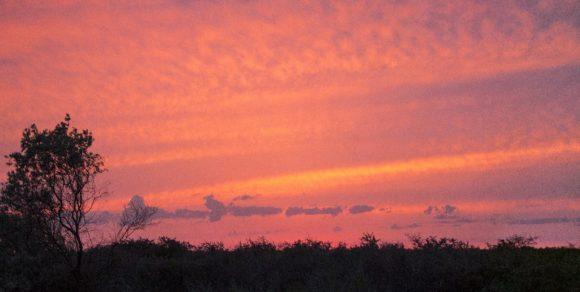 Встали мы на берегу пересохшей речки, среди засохшего кустарника и гуляющих коров. Красный закат предрекал нам на завтра ветер.