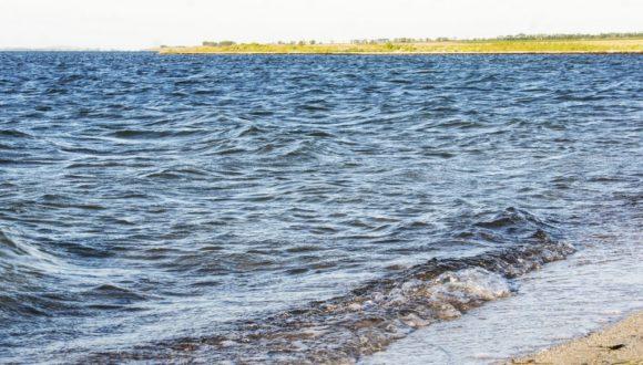 А еще тут море было с водорослями и мутью.