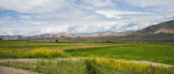 Киргизия. Весна 2016.