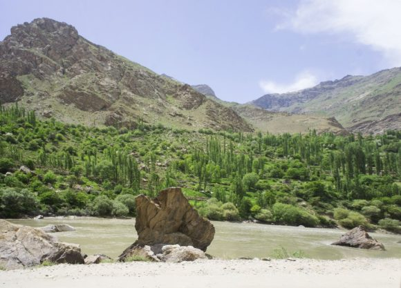 Афганская зелень.