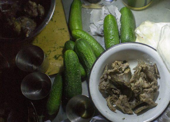 Единственное, что развлекло нас в этот вечер - свежепойманное и потушенное мясо черепахи и змеи.