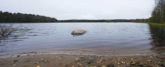 Озеро Меднозаводской разлив Медного озераОбразовано запрудой на Чёрной речке, устроенной здесь в последней четверти XVIII века для нужд медеплавильного завода, принадлежавшего А. В. Ольхину.