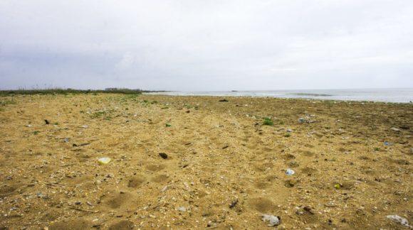 А вот пляж... ну почему люди такие свиньи?