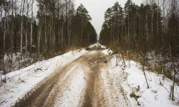 На маршрут мы заходили со стороны Петушков. Лесные дороги оказались подмерзшими.