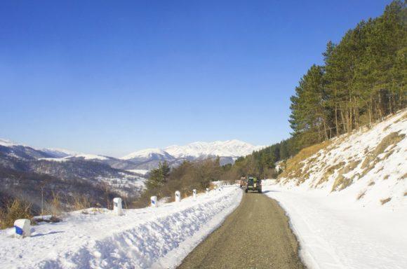 Конечно, снег и солнце подразумевали мороз, но ничего не поделаешь, а глаз радуется.