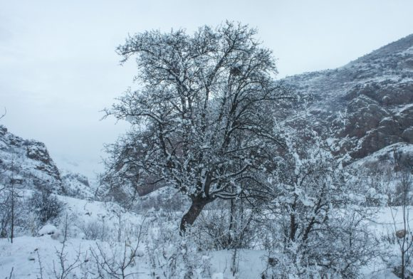 Вокруг по зимнему красиво и так же по зимнему холодно.