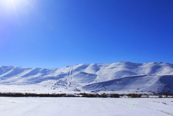 Конечно, снег и солнце подразумевали мороз, но ничего не поделаешь, а глаз радуется!