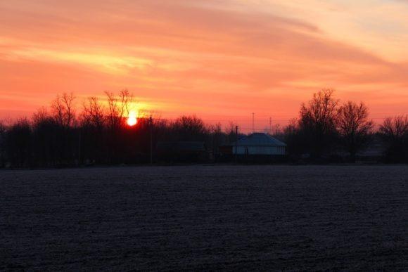 На ночевку встаем не доезжая Ростова-на Дону в перелеске рядом с деревней.